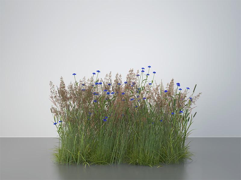 2016 virtual nature meadows 001 tty art - 2016 - Virtual Nature - Meadows
