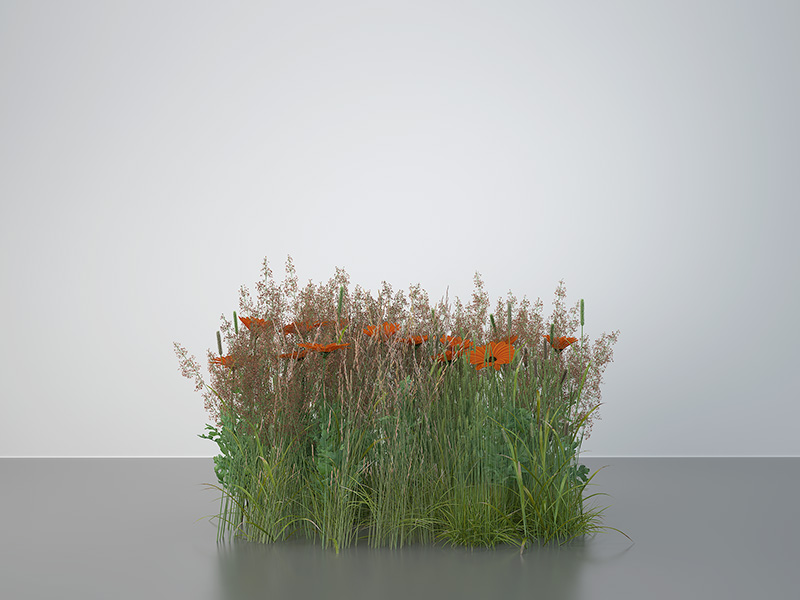 2016 virtual nature meadows 002 tty art - 2016 - Virtual Nature - Meadows