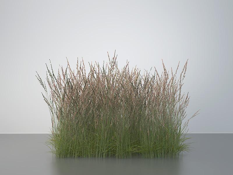 2016 virtual nature meadows 004 tty art - 2016 - Virtual Nature - Meadows