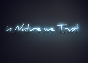 in nature we trust featured tty art 300x214 - in Nature we Trust