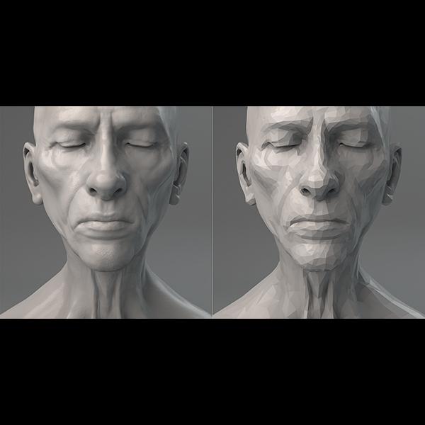 2017 virtual portrait the diptych 000 tty art - 2017 - Virtual Portrait. The Diptych