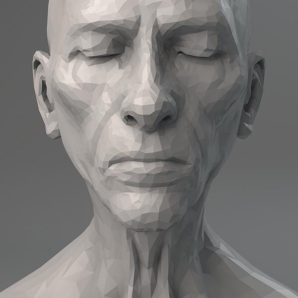 2017 virtual portrait the diptych 002 tty art - 2017 - Virtual Portrait. The Diptych