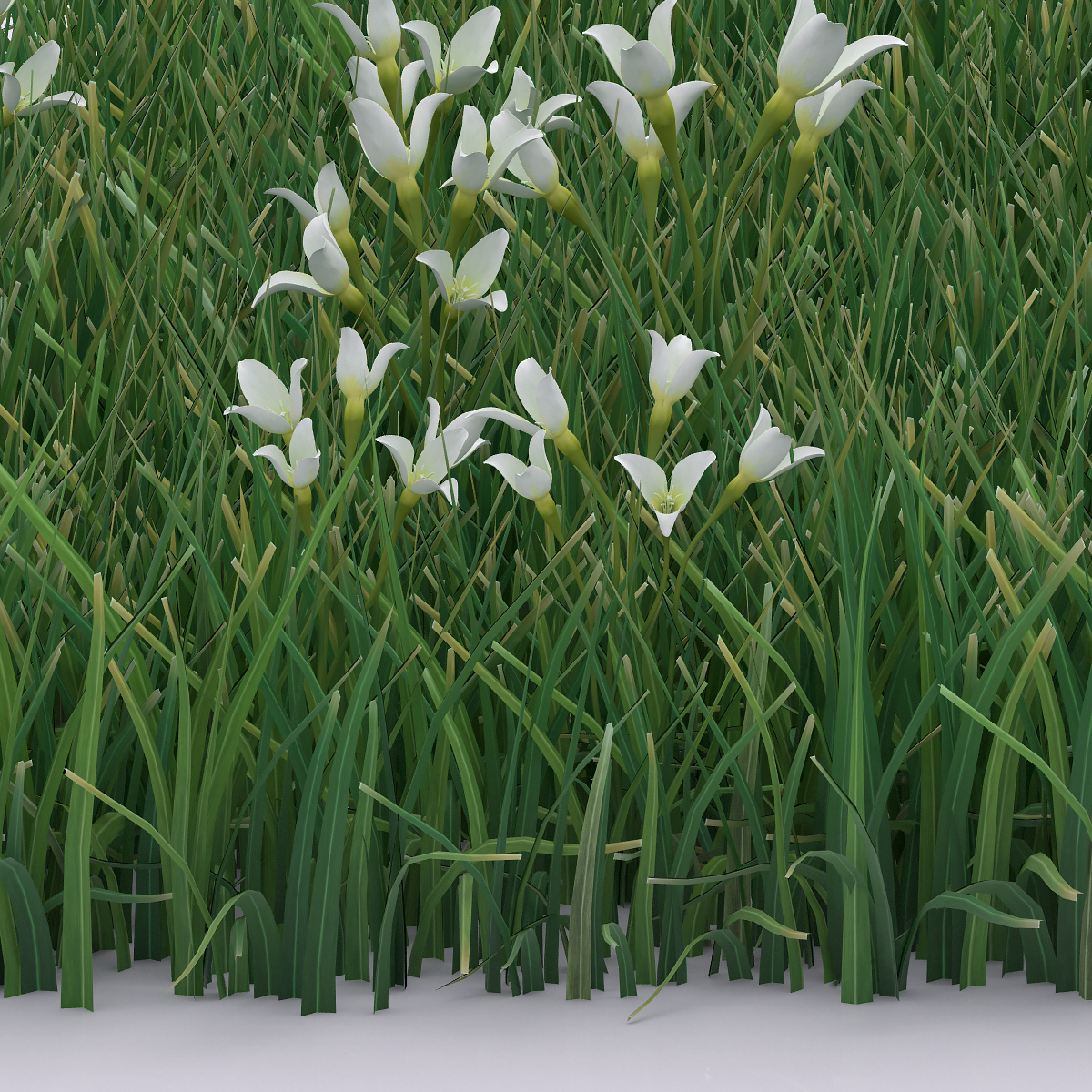 Detail Virtual Flowers and Grass 005 - 2018 - Virtual Flowers and Grass