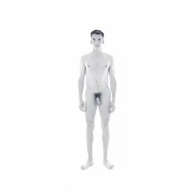 001 The last HomoSapiens Bodies 005 400x400 - Visuals. 2018