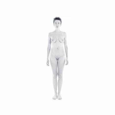 001 The last HomoSapiens Bodies 010 400x400 - Visuals. 2018