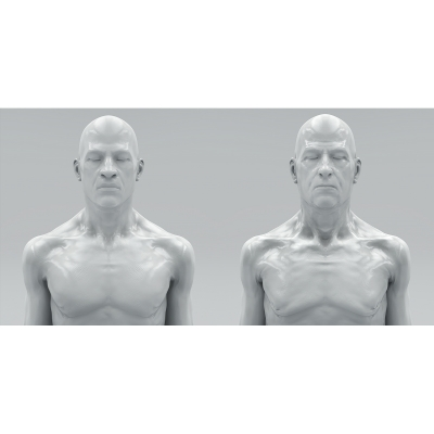 016 Virtual Portraits Busts 000 400x400 - Visuals. 2017