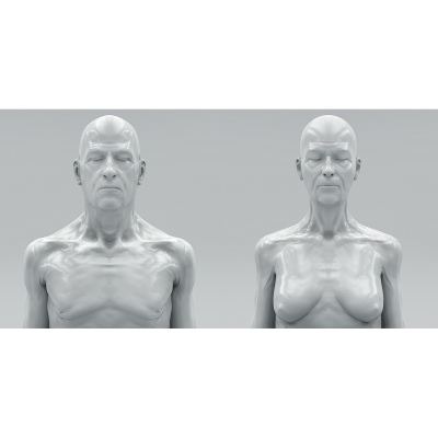018 Virtual Portraits The couple Busts 000 400x400 - Visuals. 2017