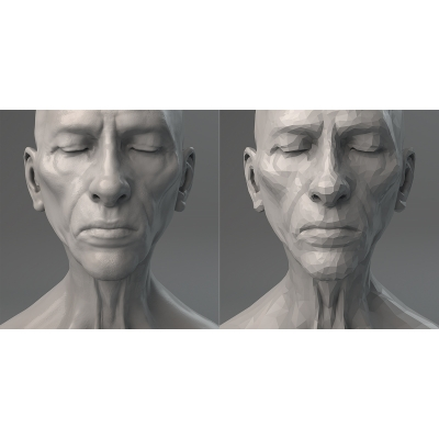 022 Virtual Portrait The Diptych 000 400x400 - Visuals. 2017
