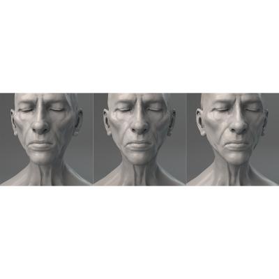 023 Virtual Portrait The Triptych 000 400x400 - Visuals. 2017