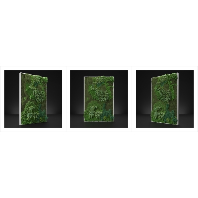 120 Virtual Vertical Garden N1 000 1200 1200 400x400 - Visuals. 2020