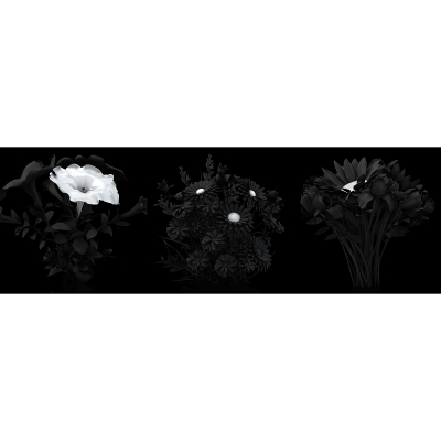 B Eternal Flowers The Black Set 001 400x400 - Visuals. 2014