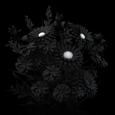 B Eternal Flowers The Black Set 003 400x400 - Visuals. 2014