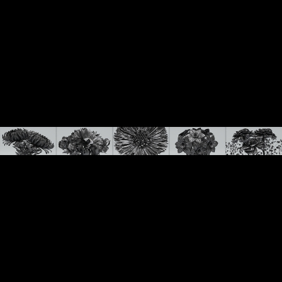 D Eternal Flowers The Black Set II 000 400x400 - Visuals. 2015