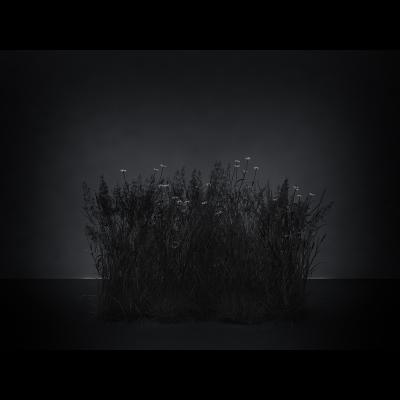E Virtual Nature Meadows The Black Set 001 1 400x400 - Visuals. 2016