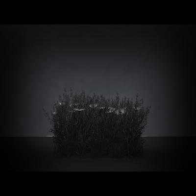 E Virtual Nature Meadows The Black Set 002 1 400x400 - Visuals. 2016