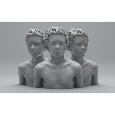 F 3D Portraits II 001 400x400 - Visuals. 2014