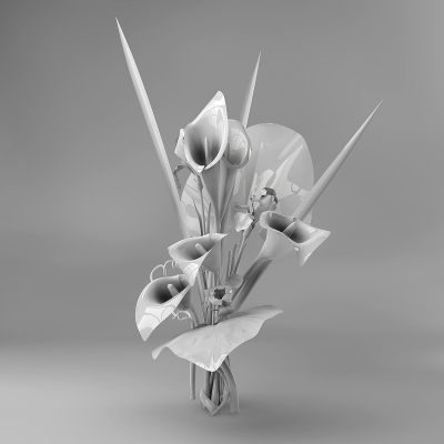 B Eternal Flowers 003 400x400 - Visuals. 2011