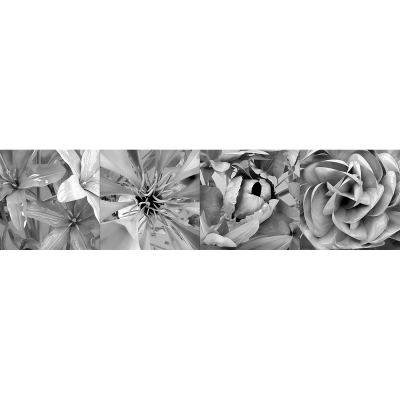 D Eternal Flowers II 001 400x400 - Visuals. 2011