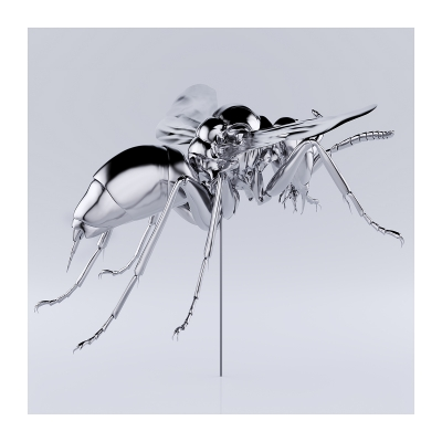 350 These were the Insects 004 400x400 - Visuals. 2020