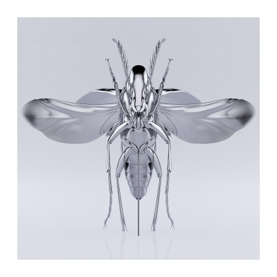 350 These were the Insects 007 400x400 - Visuals. 2020