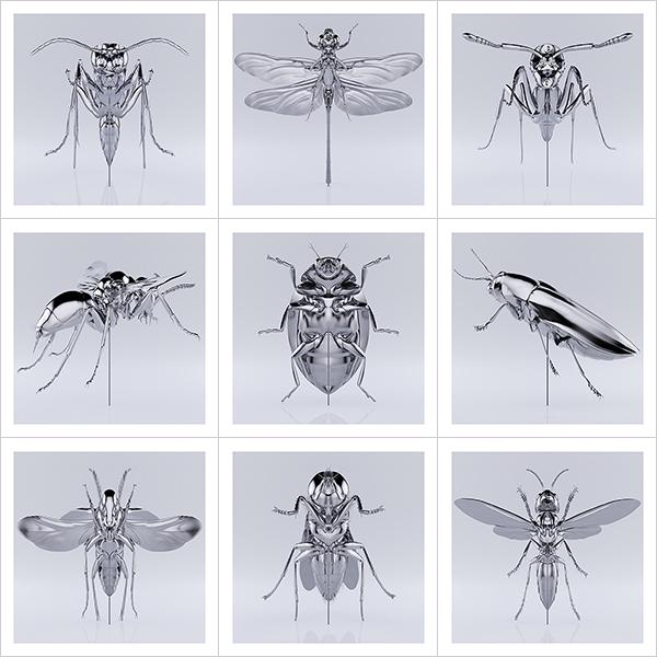 These were the Insects 000 - 2020 - These were the Insects