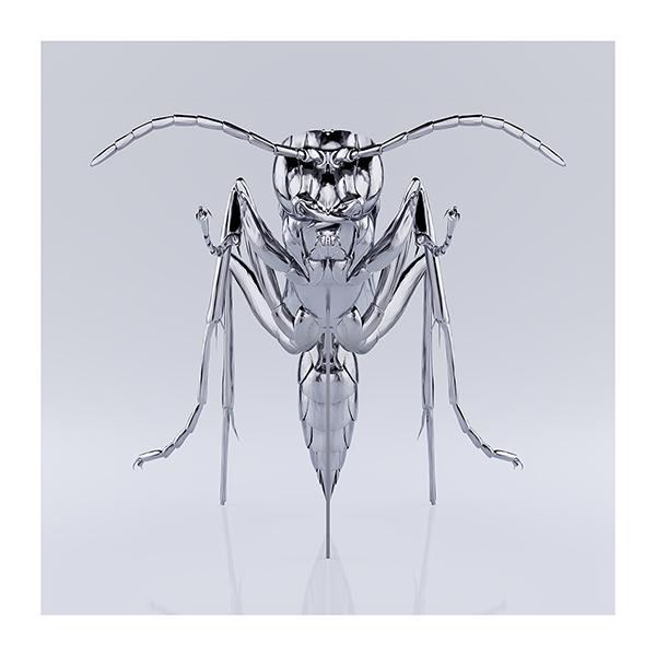 These were the Insects 001 - 2020 - These were the Insects