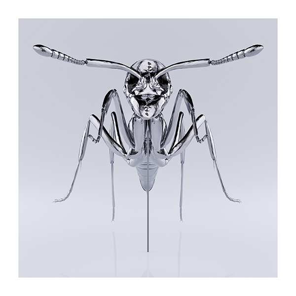 These were the Insects 003 - 2020 - These were the Insects