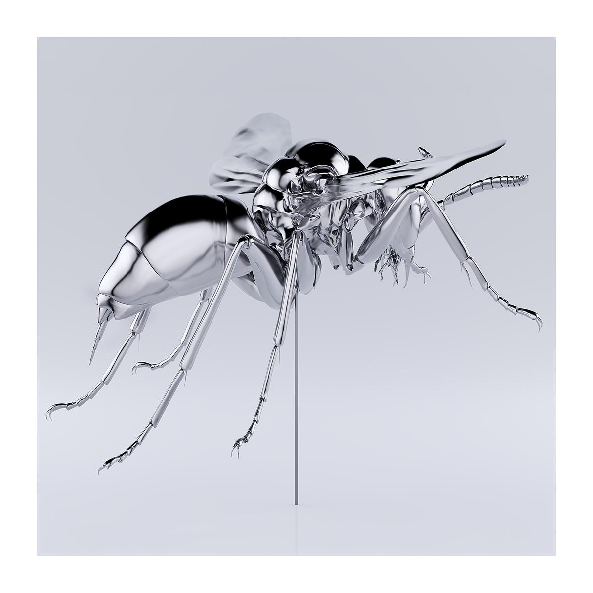 These were the Insects 004 1 - 2020 - These were the Insects