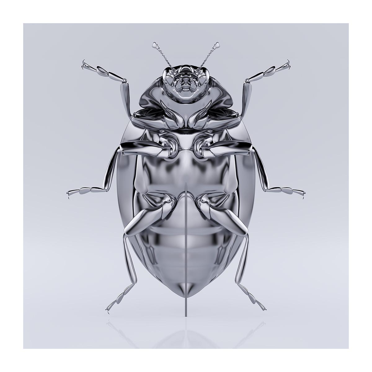 These were the Insects 005 1 - 2020 - These were the Insects