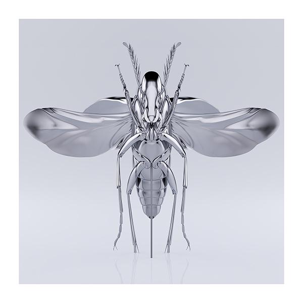 These were the Insects 007 - 2020 - These were the Insects
