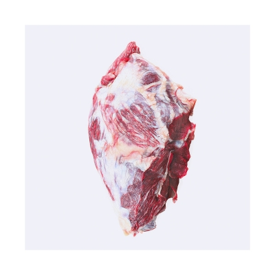 420 This was HomoSapiens Meat III 008 400x400 - Visuals. 2020