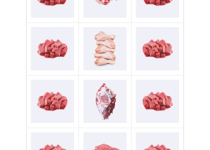 This was HomoSapiens Meat III 000 300x214 - Overview