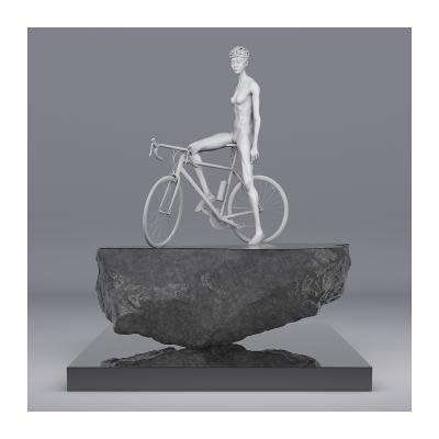 110 TWHS Le Tour de France II 002CP 003 400x400 - Visuals. 2021