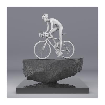 110 TWHS Le Tour de France II 002CP 006 400x400 - Visuals. 2021