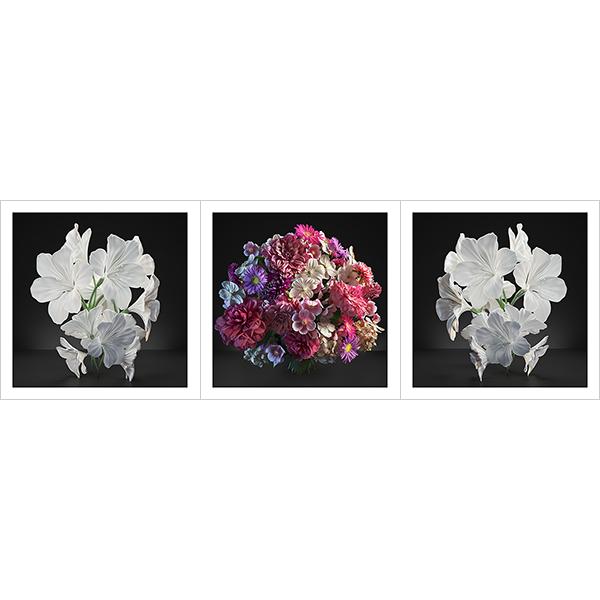 Virtual Flowers 2021 I 000 - 2021 - Virtual Flowers. 2021. I